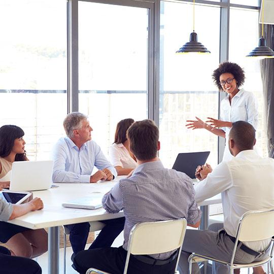 Pluaris Enterprise for large teams