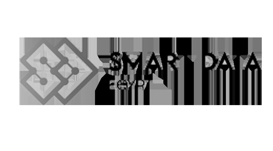 SmartDataEgyptBW